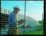 Ранч-1, сетка для ограждения и спортплощадок, зеленая, 1,5(2)х50м Tenax, Италия
