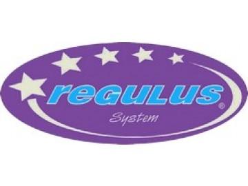 Regulus - system Украина