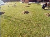 Фото 4 Вертикуляция аэратор Ремонт газона Борисполь Бориспольский район 342910