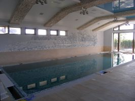 роспись стен (бассейн)