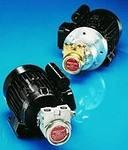 Роторно-пластинчатые насосы с двигателем Fluid-o-tech, Италия