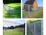 Фото 1 Забор из сетки рабица - Вся Украина 324121