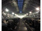 Свинарники, коровники - работаем по всей Украине
