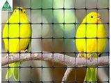 Фото  1 Сетка для ограждения птиц и мелких животных Aviary 1.5х200 м (ячейка 15х18 мм) 1845337