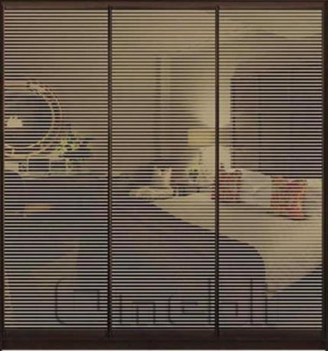 Шкаф-купе Премиум 3-х двер. №1, 220*45 фасад 72/72/72 з/бронза корпус дуб молоч. A30814