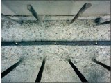 Фото  1 Бентонитовые шнуры Lavioseal® HI-FLEX для защиты швов в конструкциях, сечение 20*25мм, длина 30 мп 2058741