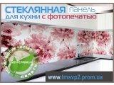 Фото  2 Фартух стеклянный для кухни 2402673
