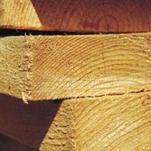 Сосновый пиломатериал: доска, брус