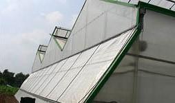 Сотовый поликарбонат для теплиц толщина листа 4 мм. , прозрачный, двойная защита, гарантия 8 лет, лучшая цена на рынке