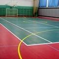 Спортивные покрытия для игровых залов и тренажерных Grabosport, Omnisports, Ecoguma, Granuflex