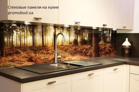 стеновая панель для кухни фото