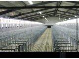 Фото 1 Строительство животноводческих комплексов 345108