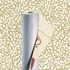Супердиффузионная мембрана Tyvek Solid