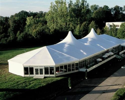 Тентовые павильоны и шатры для презентаций, шоу-программ, свадеб, шириной от 3м до 60м и неограниченной длиной