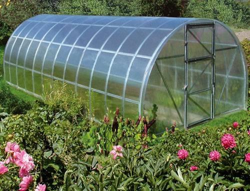 теплица 8х3х2 малая фермерская. Остекление - поликарбонат. Оптимальный выбор для максимального урожая.