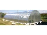 Фото  1 Теплица «Алмир» 6х8 из оцинкованной квадратной трубы с поликарбонатом Soton 8 мм 2352327