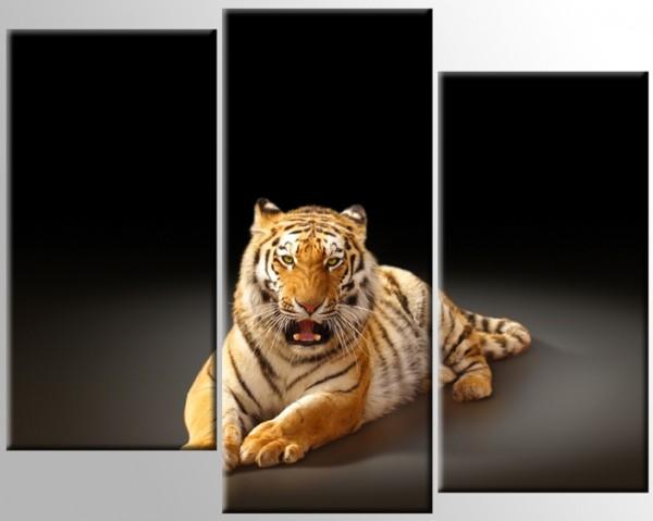 Тигр 2 - 560,00 грн