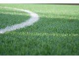Фото  4 Искусственная трава DOMO Slide DS 50M/43 для больших футбольных полей, искусственное покрытие для футбольного поля 4949470