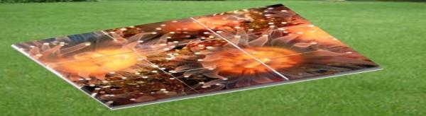 тротуарная плитка 3д эффект