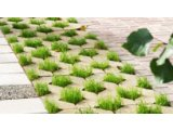 Тротуарная плитка ТМ Золотой мандарин - Парковочная решетка