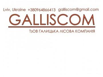 ТзОВ Галицька лісова компанія