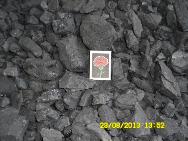 Уголь ДГО (13-100)