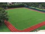 Фото 4 Строительство футбольных полей. штучна трава 337351