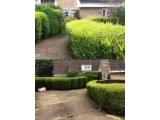 Фото 6 Услуги садовника. Комплексный уход за садом 342971