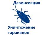 Фото  1 Услуги по ДЕЗИНСЕКЦИИ насекомых и клопов в КИЕВЕ И КИЕВСКОЙ области 2022415