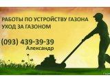 Фото 1 Догляд за газоном Бориспіль район 342906