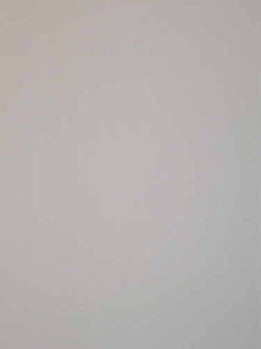 Панель пластиковая в Киеве 250х6000х4;5 мм, бесшовная снежно-белая матовая. Доставка, монтаж.