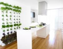 Вертикальные сады для дома и сада. Разборные. В салоне по адресу ул. Культуры, 26.