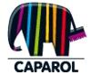 Высокоустойчивая фасадная краска Капарол