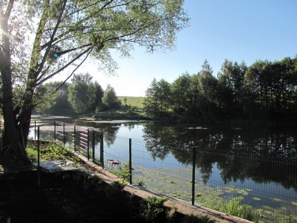 Забор для ограждения парка, сада, санаториев, зоны отдыха из оцинкованной проволоки