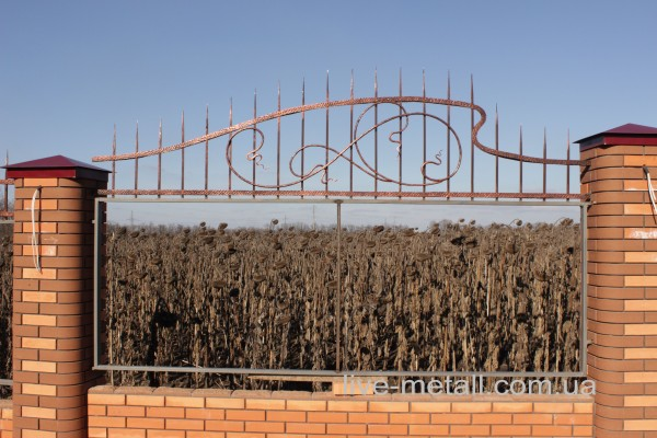 Забор кованый. Индивидуальная разработка дизайна. Изготовление и монтаж в Днепропетровске.