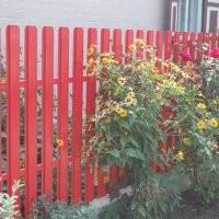 Забор з профнастилу дешево для вашого дому. Цинк, поліестр. Монтаж огорожі