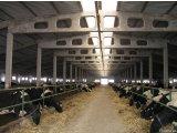 Фото 1 Здания сельскохозяйственного назначения 331722