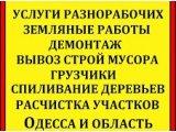 Фото 1 Уборка,планировка участка,спил дерева, демонтажные ,вывоз мусора Одеса 341068