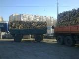 дрова в виде кругляка